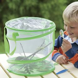 Praying Mantis Habitat Kit