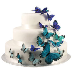 Something Blue Butterfly Cake Decoration