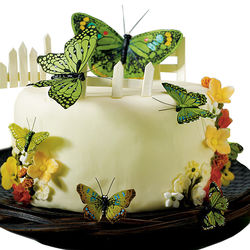 Hand Painted Garden Green Butterfly Cake Decoration