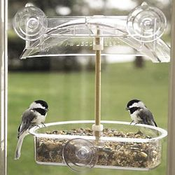 Deep Dish Window Bird Feeder