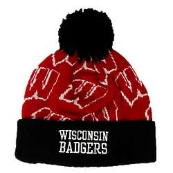 Wisconsin Badgers Preschool Knit Logo Hat
