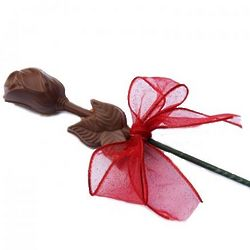 Chocolate Long Stem Single Rose