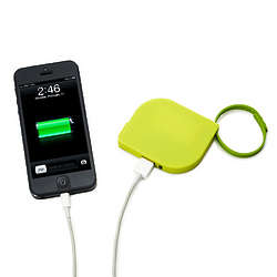 Leaf Universal Charger