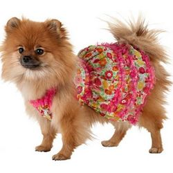 Dog's Floral Ruffle Dress