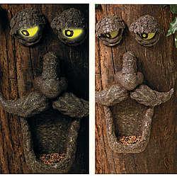 Birdfeeder Tree Face