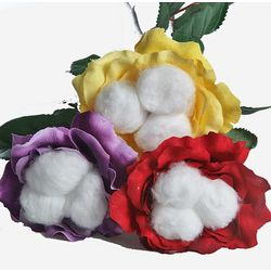 12 Stem Just Cotton Roses