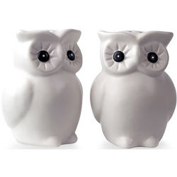 Spicy Girls Owl Salt and Pepper Shakers