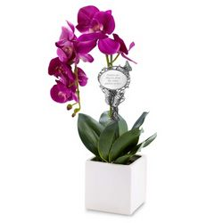 Orchid Floral Arrangement with Butterfly Plant Stake