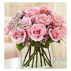 One Dozen Pink Modern Roses