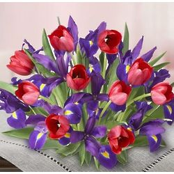 Hugs and Kisses Tulip and Iris Bouquet
