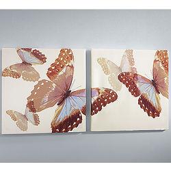 Butterfly Ballet Print Set