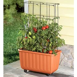 Tomato Planter and Tower