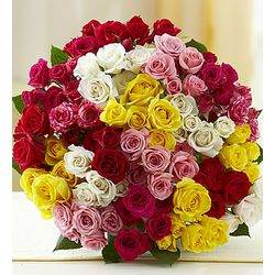 100 Blooms of Spray Roses