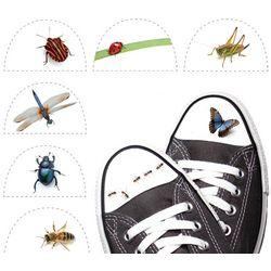 Shoe-fly Shoe Tattoos