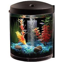 360 View 2 Gallon Aquarium Kit