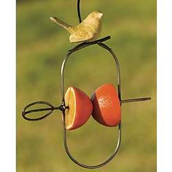 Hanging Fruit Spear Bird Feeder