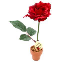 20 Years of Anniversary JustDesk Roses