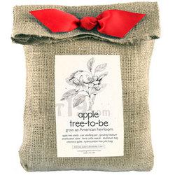 Apple Tree-to-Be Kit