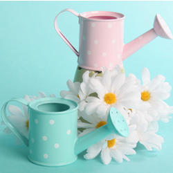 Polka Dot Watering Can Favor