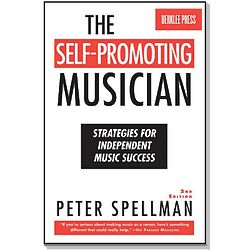 Self-Promoting Musician Strategies for Independent Music Success