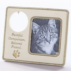 Cat Pet Tag Memorial Frame