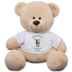 Teddy Bear in Personalized Reindeer T-Shirt