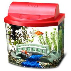 Red Top Mini Bow Desktop Aquarium Kit