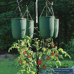 Bottoms Up Self-Watering Hanging Veggie Planter