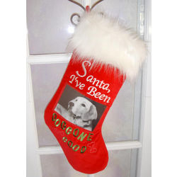 Dog Picture Christmas Stocking