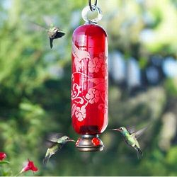 Filigree Glass Hummingbird Feeder in Flame Red
