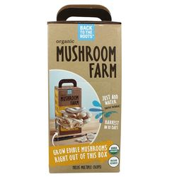 Grow Your Own Pearl Oyster Mushrooms Kit