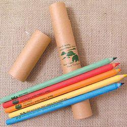 Eco-Friendly Colored Pencils