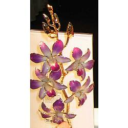 Natral Orchids with 24K Gold Plated Trim