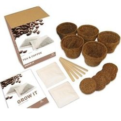 Grow Your Own Tea and Coffee Gift Box