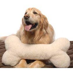 Large Bone Pillow Toy