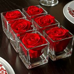 Infinite Red Rose Cube Set