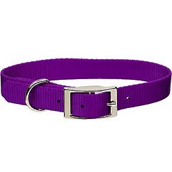 Personalized Purple Nylon Dog Collar