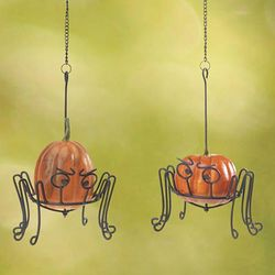 Halloween Spider Mini Pumpkin and Gourd Holders