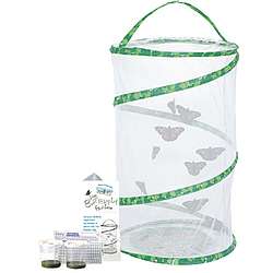 Butterfly Pavillion Kit With Certificate for Catepillars