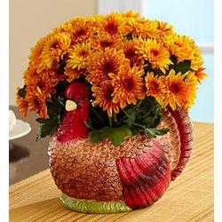 Fall Harvest Mum Centerpiece
