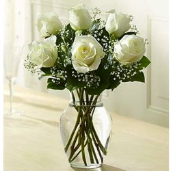 Love's Embrace White by Rose Bouquet