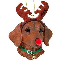 Personalized Flashing LED Nose Dachshund Ornament