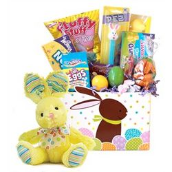Cottontail Easter Bunny Candy Basket