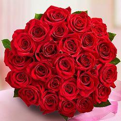 24 Stem Red Roses
