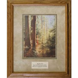 Forest Beauty Framed Memorial Art Print