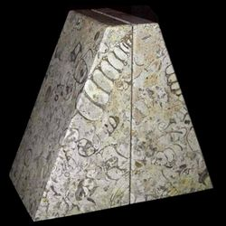 Fossil Coral Stone Bookends