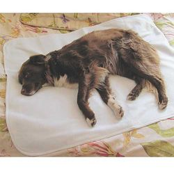 Large Therapeutic Pet Mat