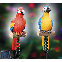 Solar Powered Parrot Garden Stakes