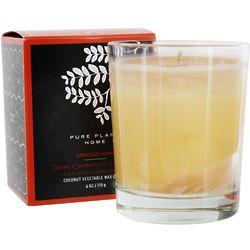 Clove, Cardamom & Vanilla Vegetable Wax Glass Candle