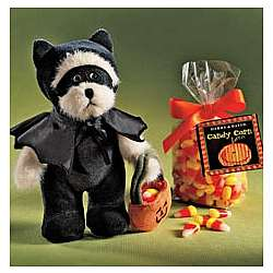 Bat Bear with Treats